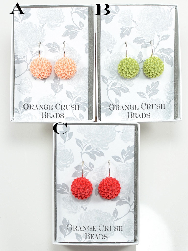 Earrings 3034