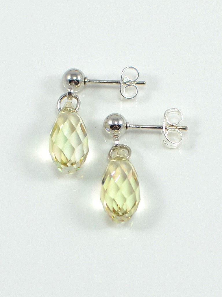 Earrings 3068