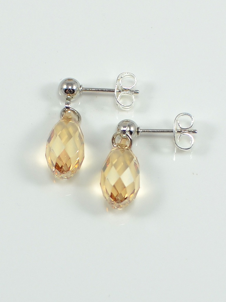 Earrings 3069