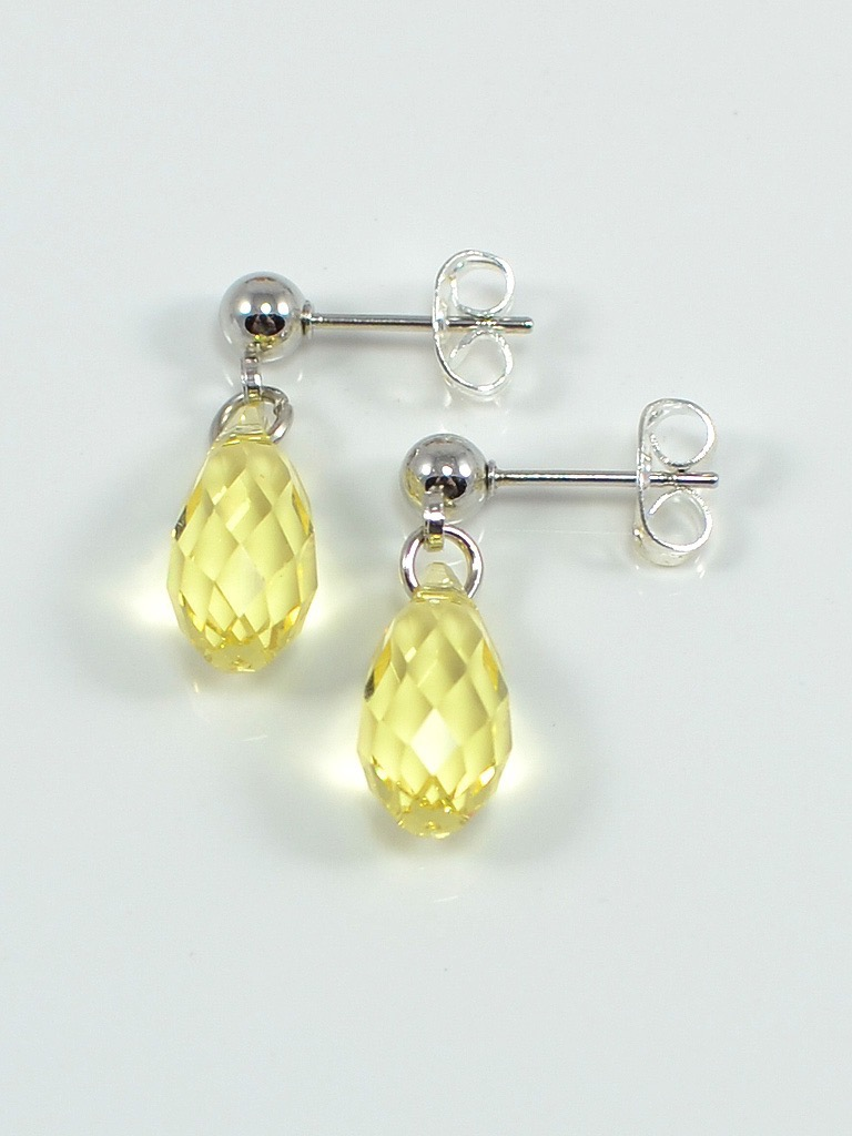 Earrings 3070