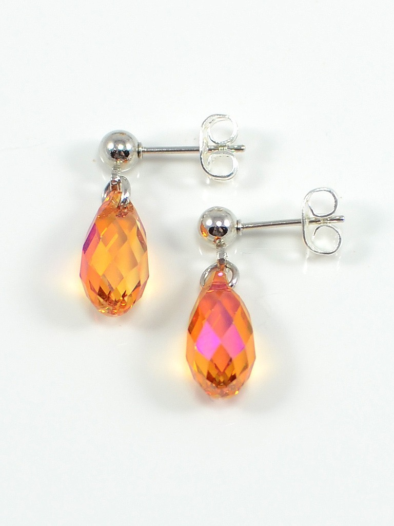 Earrings 3072