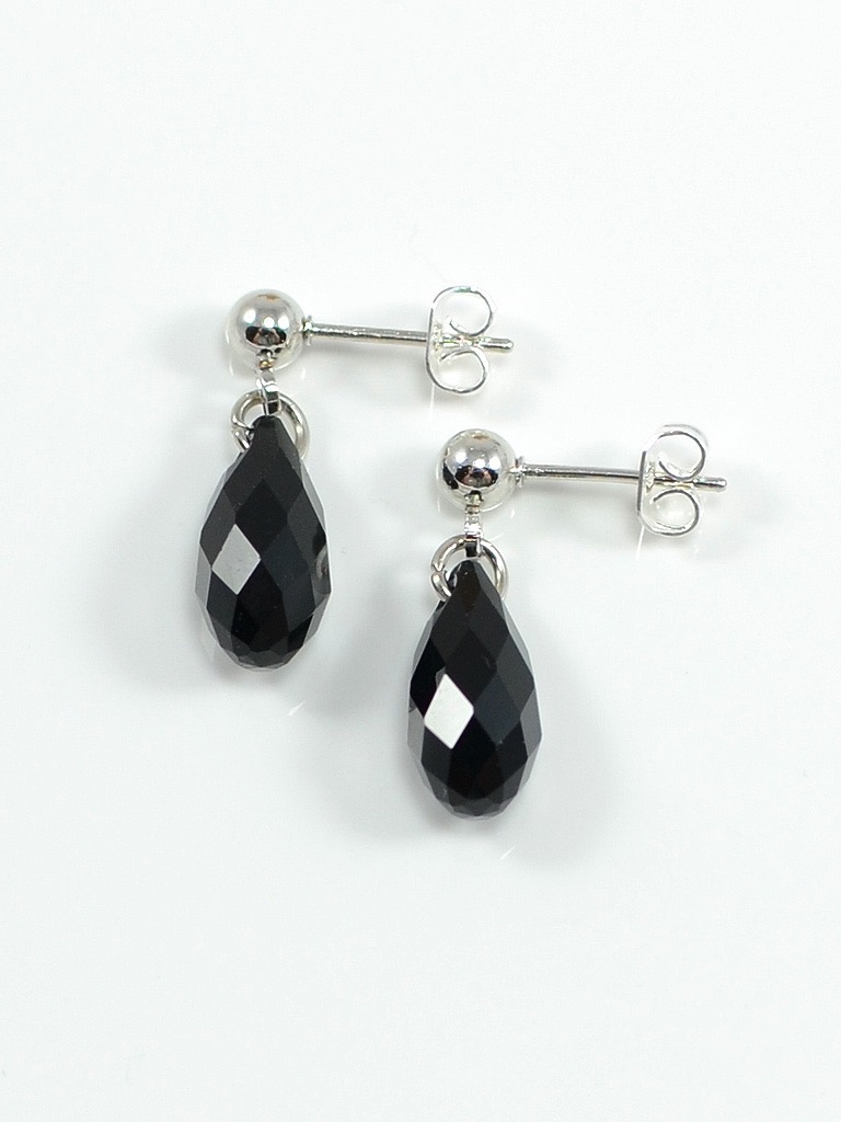 Earrings 3089