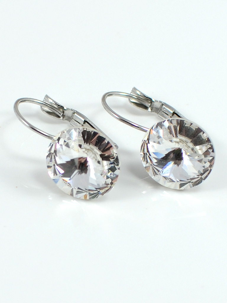 Earrings 3181