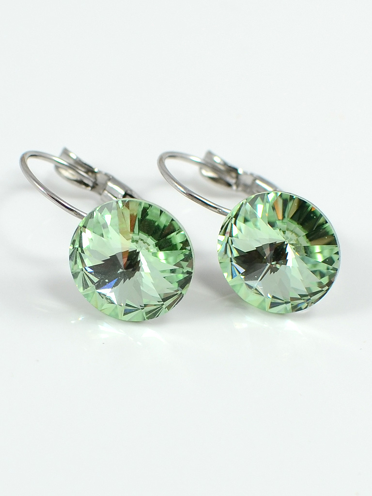 Earrings 3183