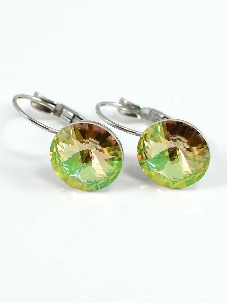 Earrings 3185