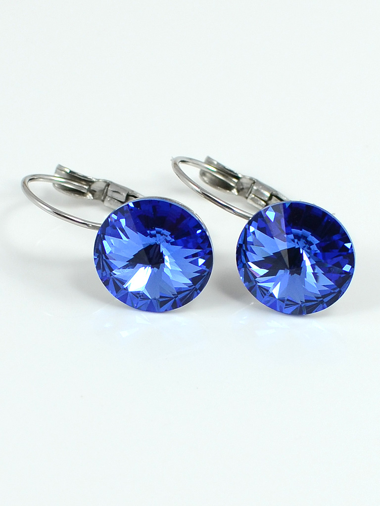 Earrings 3193