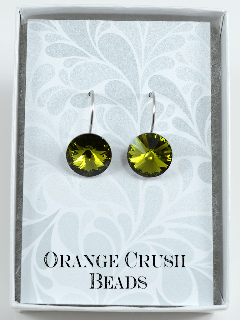 Earrings 3194