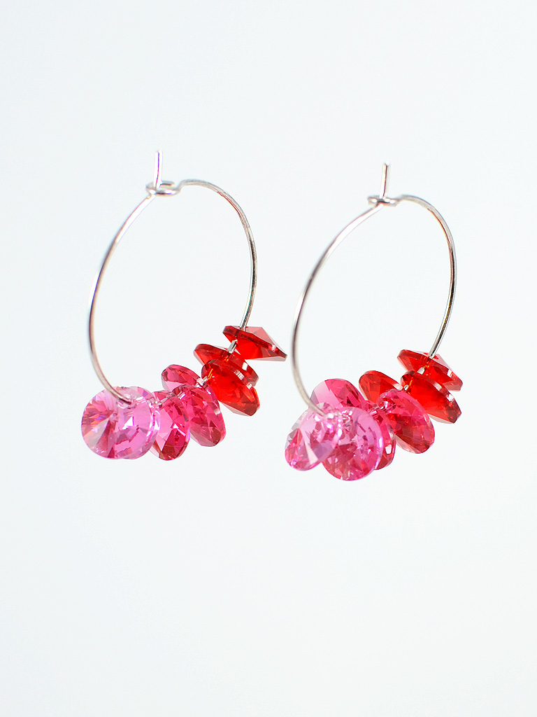 Earrings 3220