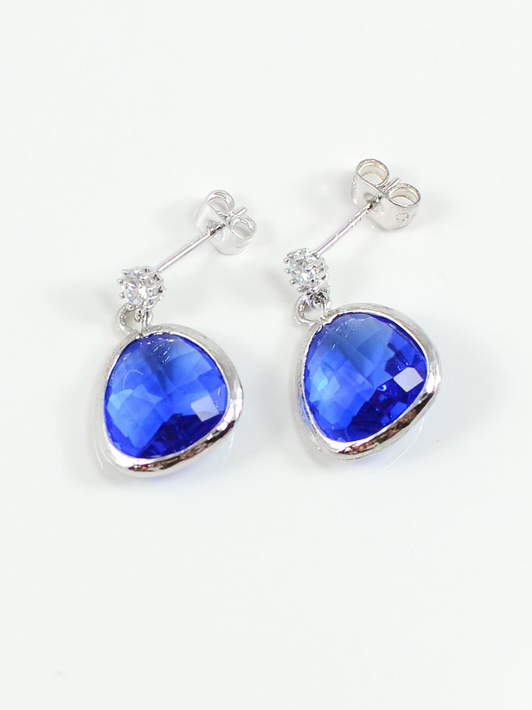 Earrings 3227