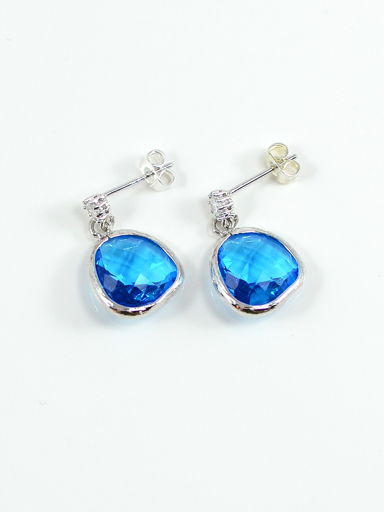 Earrings 3229