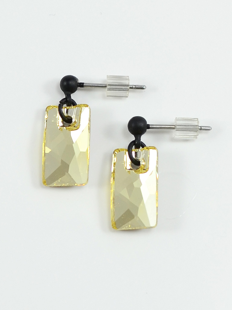 Earrings 3253
