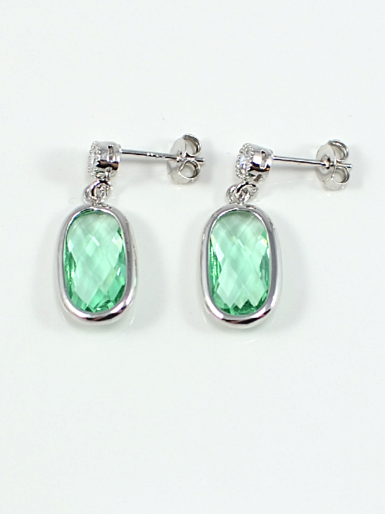 Earrings 3413