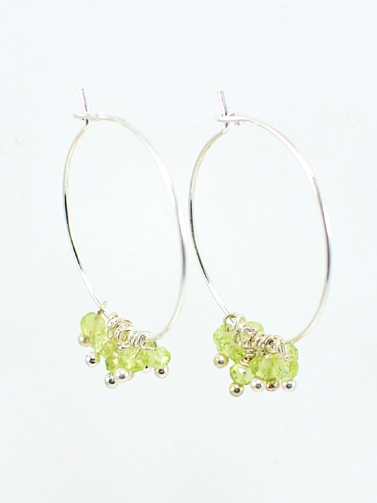 Earrings 3434
