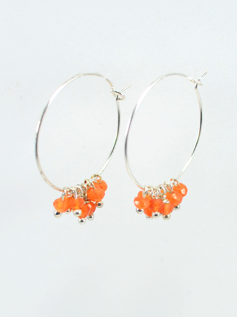Earrings 3435