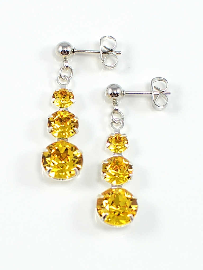 Earrings 3489