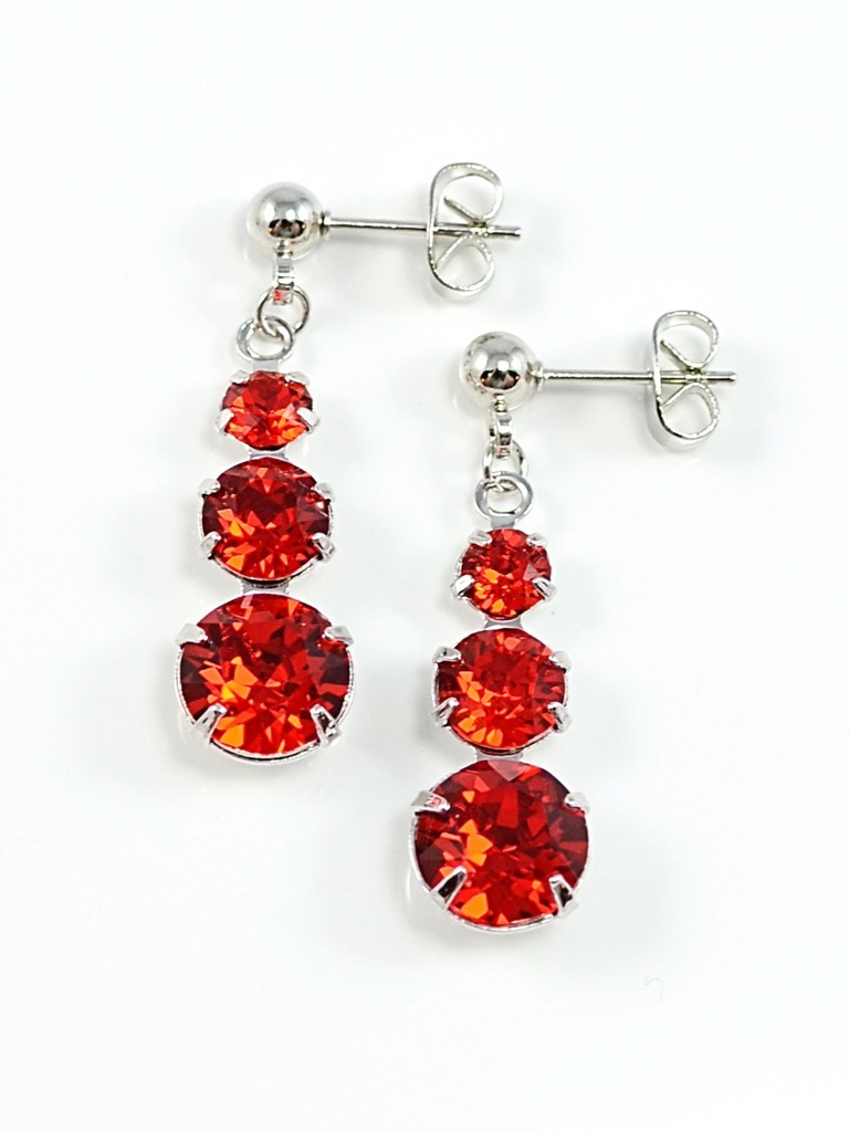 Earrings 3493