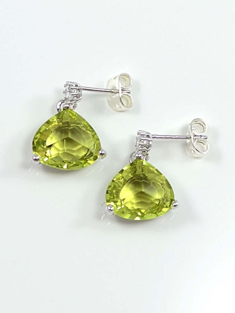 Earrings 3504